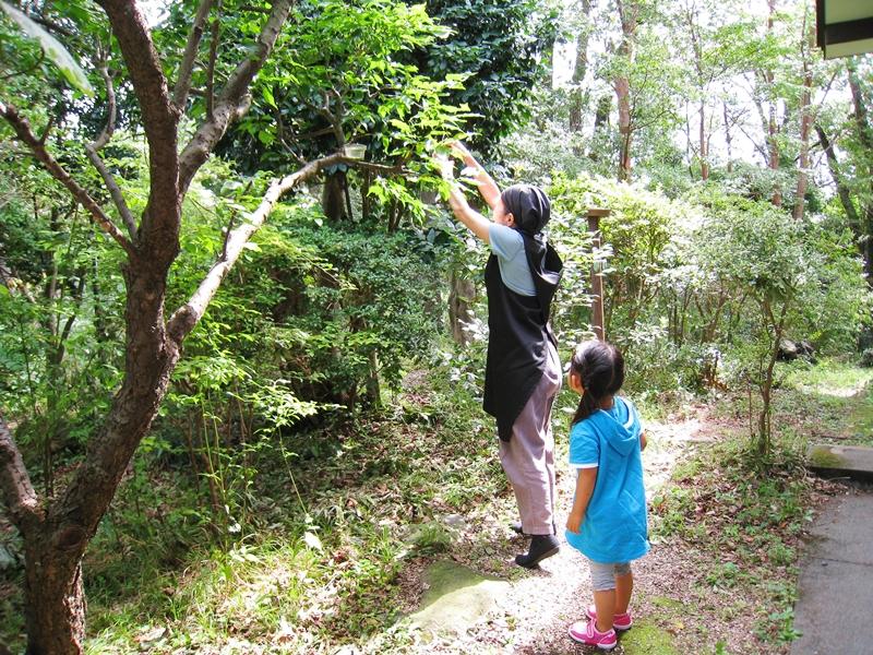 木に手をやる女性とそれを見る女の子
