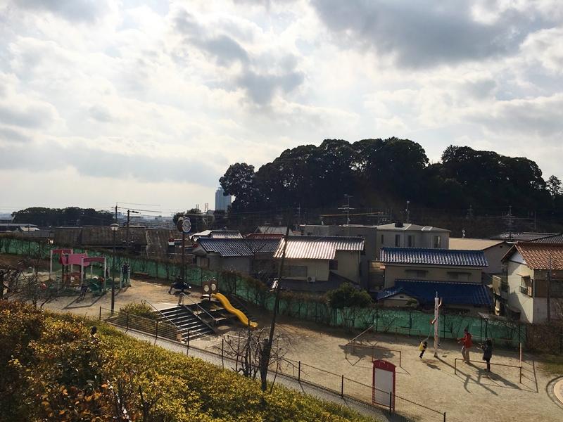 高台から見た公園