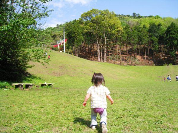 小室山公園の芝生を歩く後ろ向きの子供