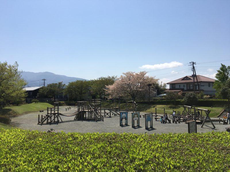 アスレチックの遊具などが並んでいる公園