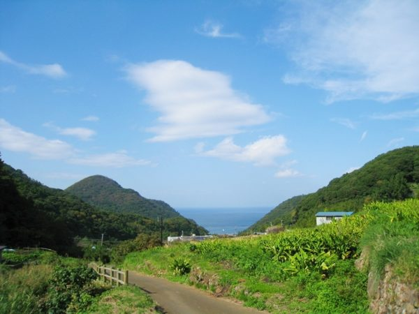 海や山など石部の棚田周辺の光景
