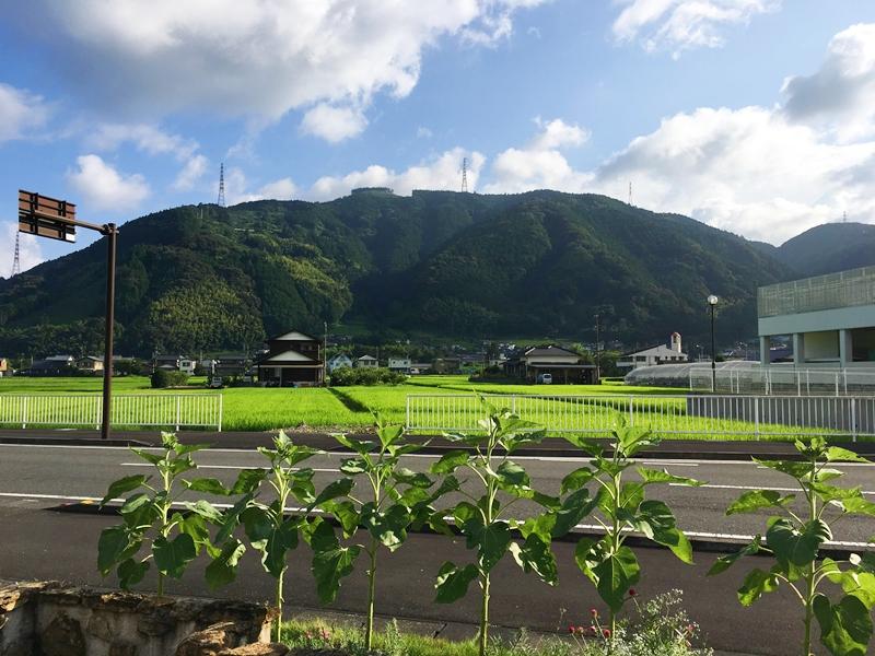 青空と山と田んぼ