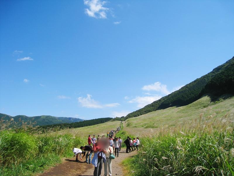 青空の下、すすきの草原を歩く人々
