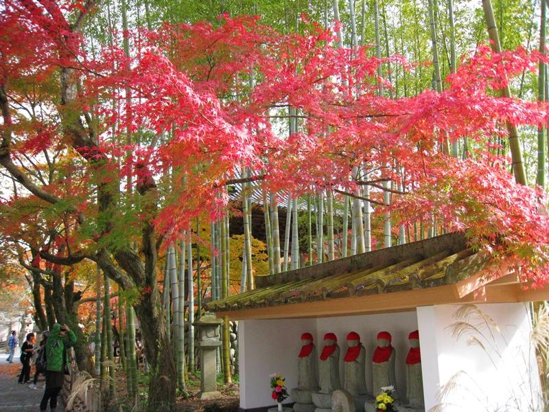 地蔵と紅葉と竹林