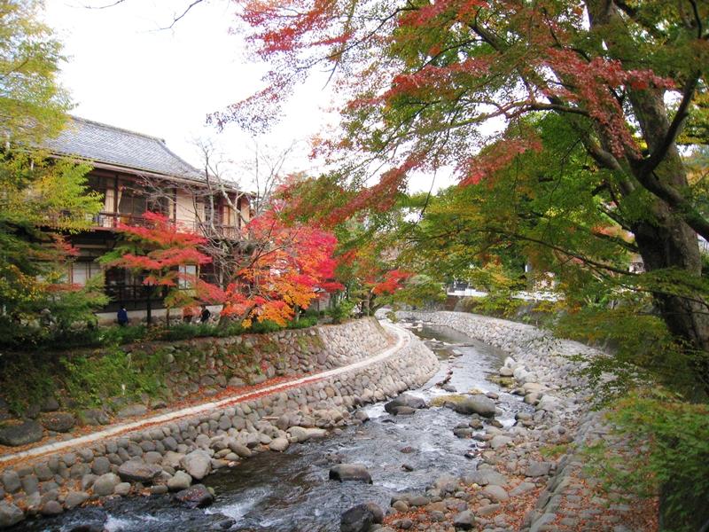 川と川沿いに立つ建物と紅葉