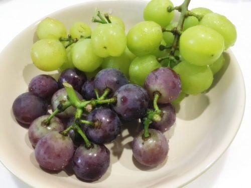 大塚ぶどう園の緑と紫のぶどう