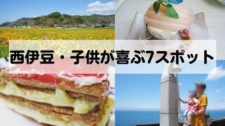 【西伊豆観光】子供が大喜びする7つのスポット|一日遊べる