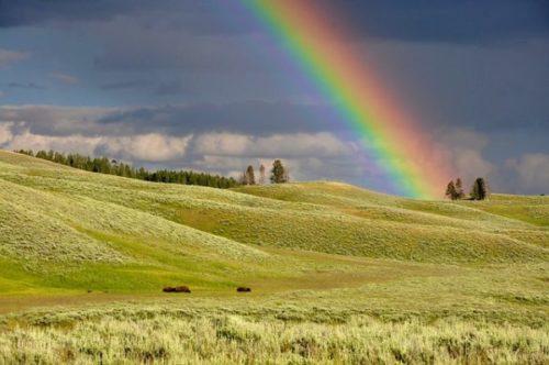 虹のかかっている空